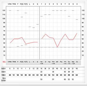 criminal sentiments scale scoring guide